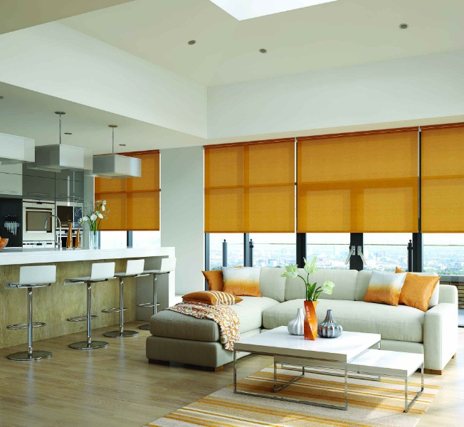 Interior Roller Blinds Preview